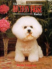 bichon copy